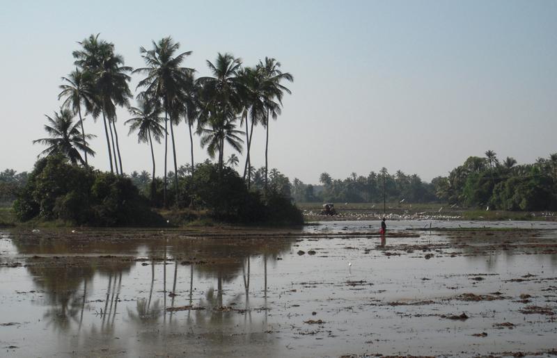 India-2011-034a