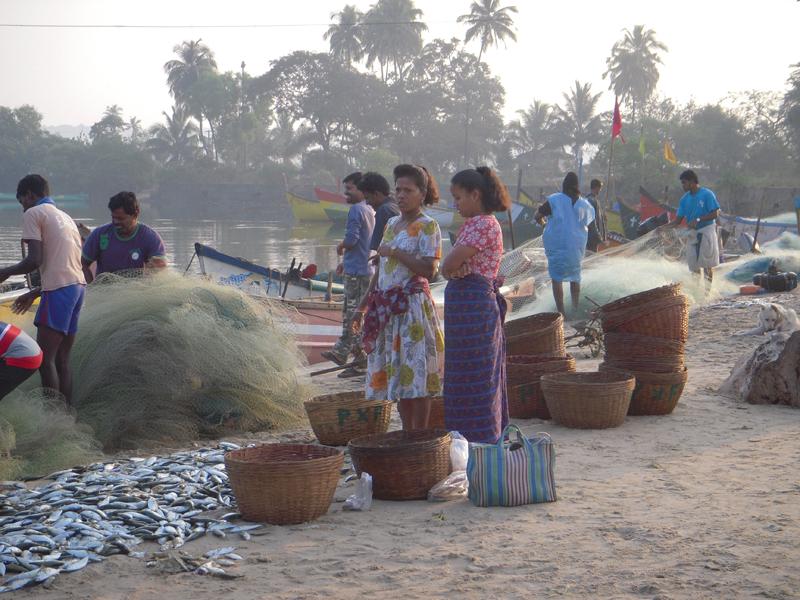 India_2010-096